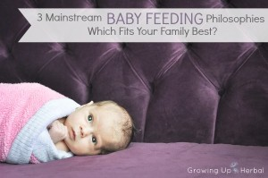 3 Mainstream Feeding Philosophies - Which Fits Your Family Best? | GrowingUpHerbal.com