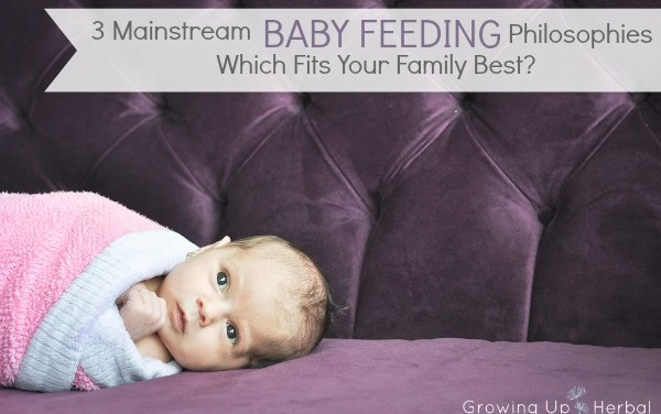 3 Mainstream Feeding Philosophies – Which Fits Your Family Best?