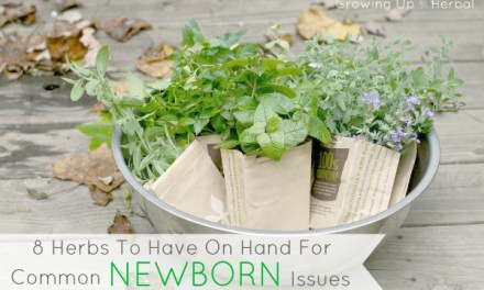 8 Herbs To Have On Hand For Common Newborn Issues
