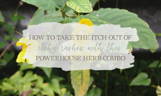 Take The Itch Out Of Itchy Rashes With This Powerhouse Herb Combo