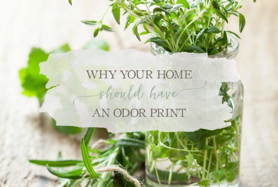 Why Your Home Should Have An Odor Print