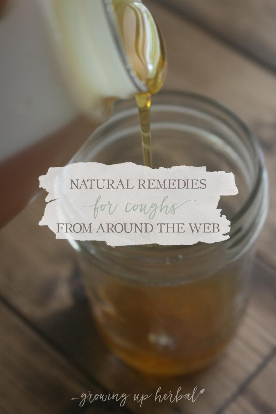 Natural Remedies For Coughs From Around The Web
