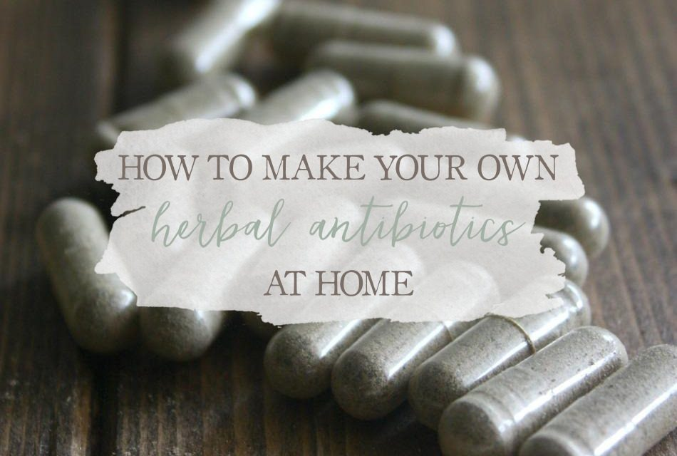How To Make Your Own Herbal Antibiotics At Home