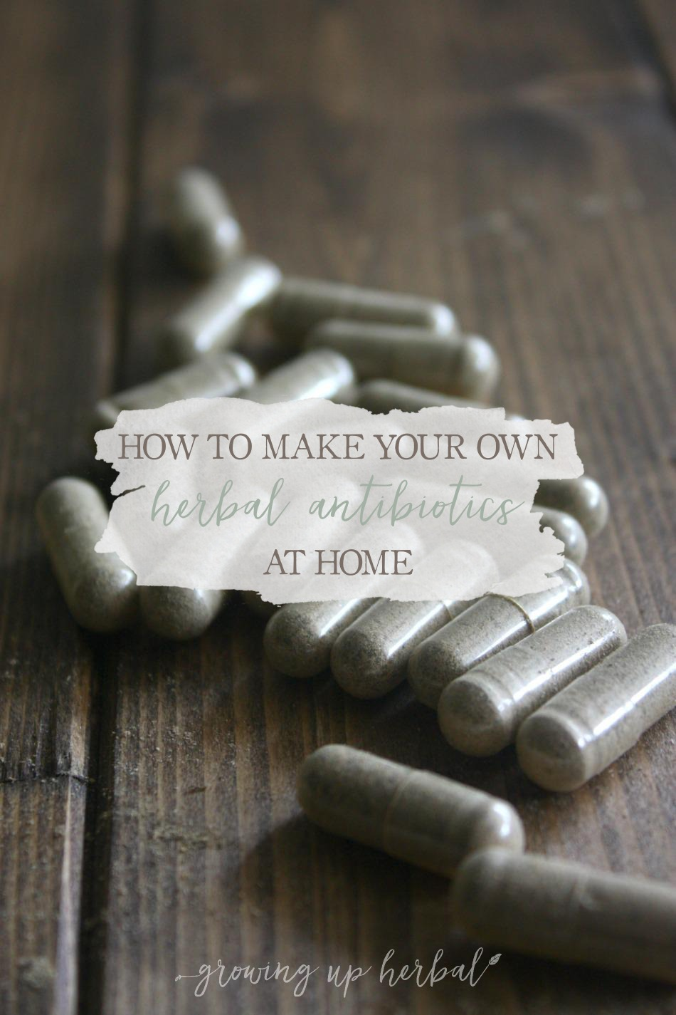 "How To Make Your Own Herbal Antibiotics At Home | Growing Up Herbal | Want to learn how to make your own ""herbal antibiotics"" at home using antimicrobial herbs? Here's how!"