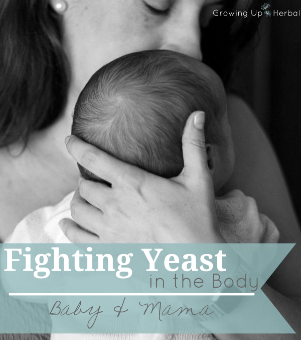 How to Fight Yeast In The Body - Baby & Mama | GrowingUpHerbal.com | How to overcome thrush and yeast issues in baby and mama.