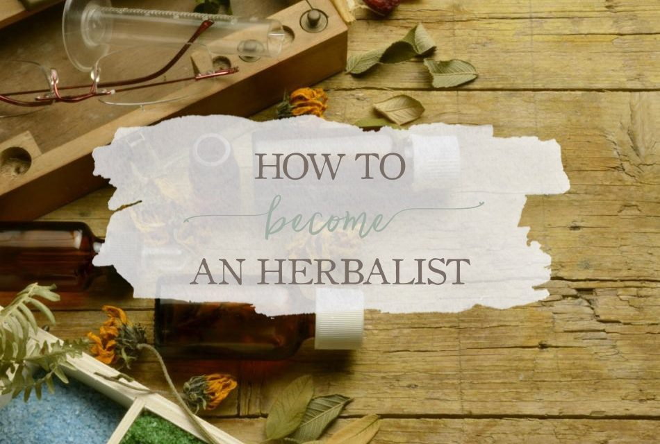 How To Become An Herbalist