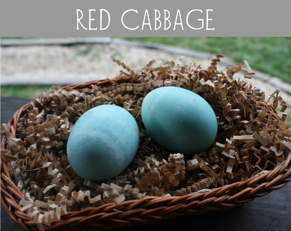 red cabbage eggs