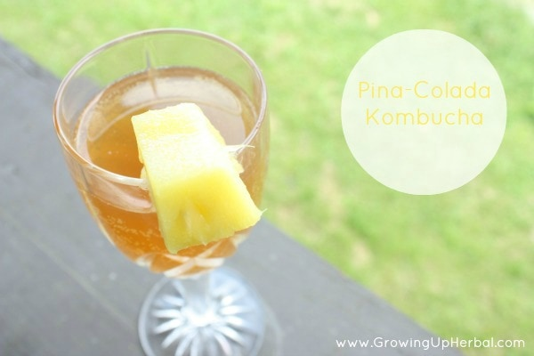 3 Flavored Kombucha Recipes You're Kids Will Love To Drink