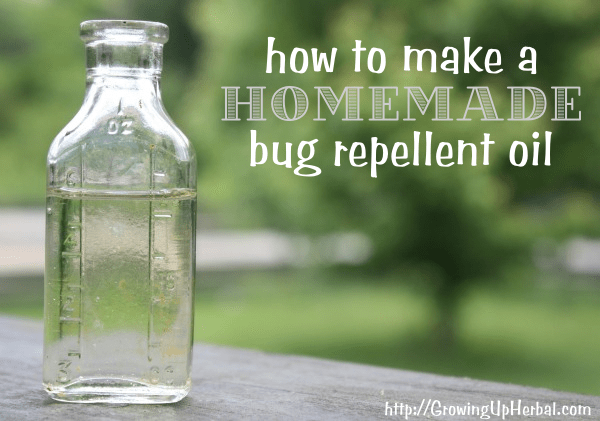 homemade bug repellent oil