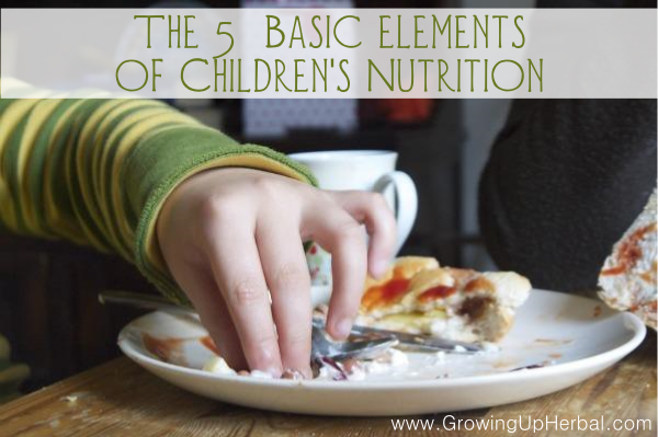 The 5 Basic Elements of Children's Nutrition | GrowingUpHerbal.com | When it comes to keeping kids healthy, diet and nutrition are the first step!
