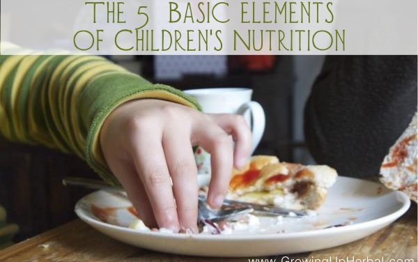The 5 Basics Elements of Children's Nutrition