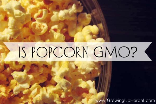 Is Popcorn GMO?