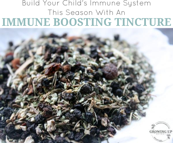 How To Make An Immune Boosting Tincture For Children