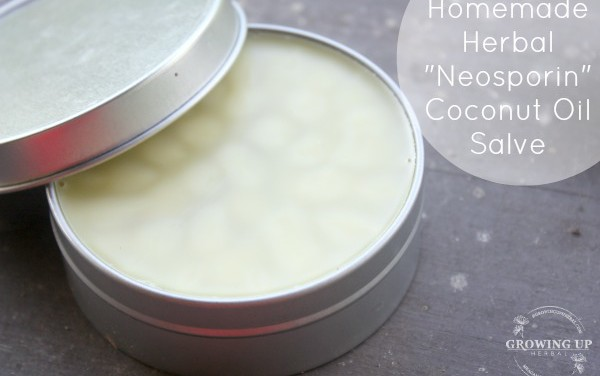 "How To Make an Herbal ""Neosporin"" Coconut Oil Salve"