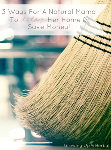 3 Ways For A Natural Mama To Detox Her Home And Save Money | GrowingUpHerbal.com | 3 easy ways to detox your home... naturally and safely.