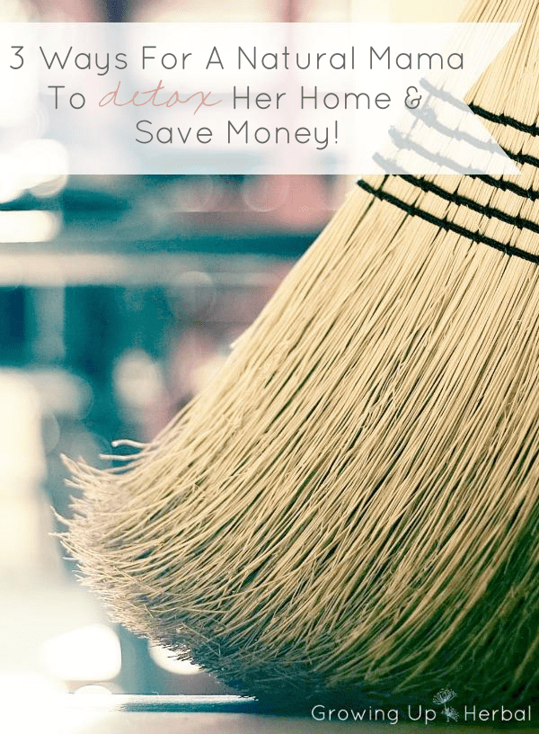 3 Ways For A Natural Mama To Detox Her Home And Save Money