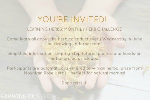 """""""Learning Herbs"""" Monthly Herb Challenge 