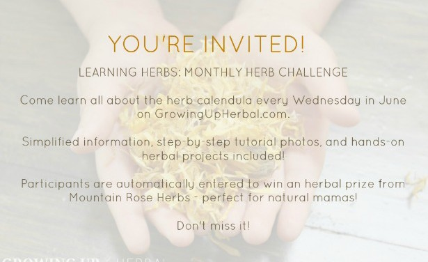 "Let's Have Some Fun Learning! Are You Up For An ""Herb Challenge""?"