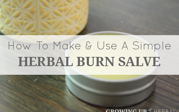 How To Make And Use A Simple Herbal Burn Salve
