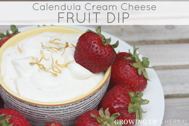 Calendula Cream Cheese Fruit Dip | GrowingUpHerbal.com | See how I use calendula in this delicious real food fruit dip!