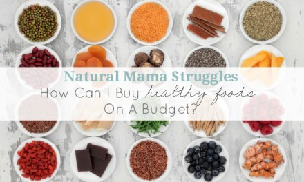 Natural Mama Struggles: How Can I Buy Healthy Foods On A Budget