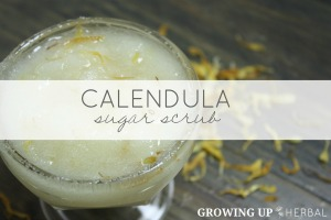 How To Make A Calendula Sugar Scrub