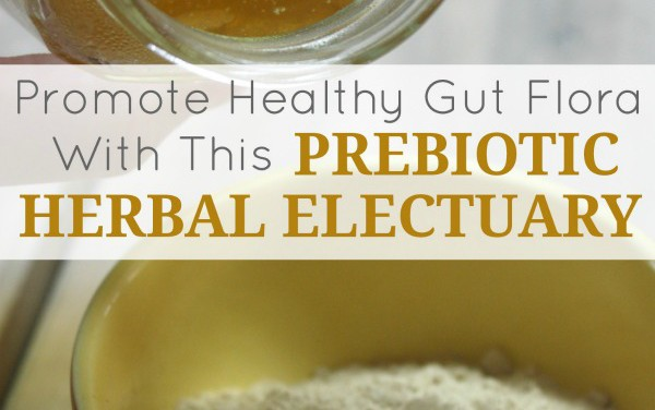 Promote Healthy Gut Flora With This Prebiotic Herbal Electuary