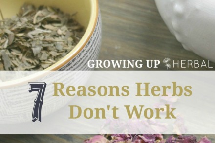 7 Reasons Herbs Don't Work | GrowingUpHerbal.com | Sometimes herbs don't work. Find out how you can be sure that they do.