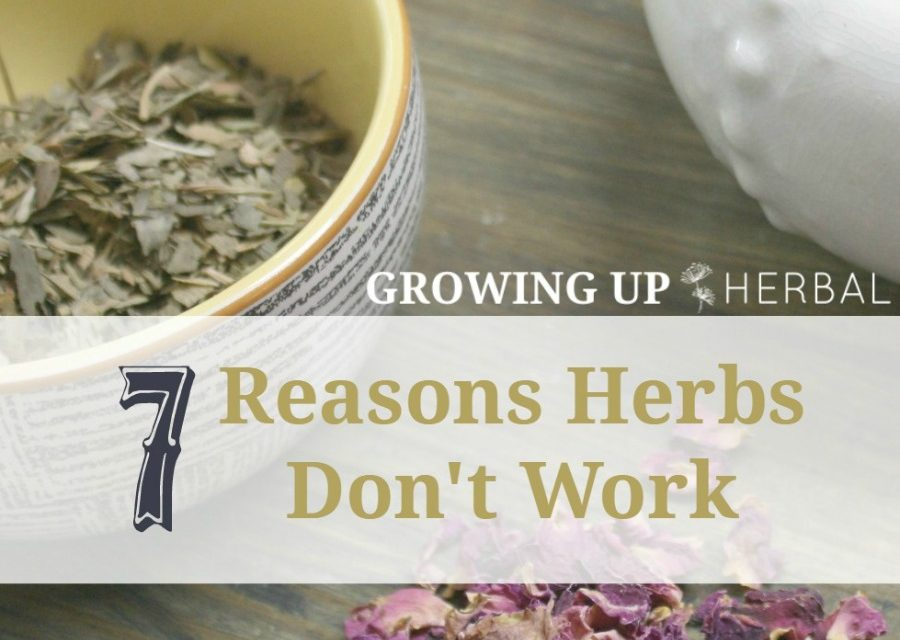 7 Reasons Herbs Don't Work