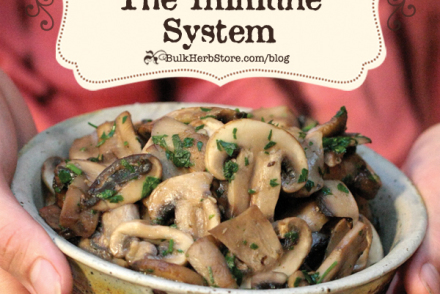 Medicinal Mushrooms for the Immune System | GrowingUpHerbal.com | Learn about medicinal mushrooms and how they benefit your immune system!