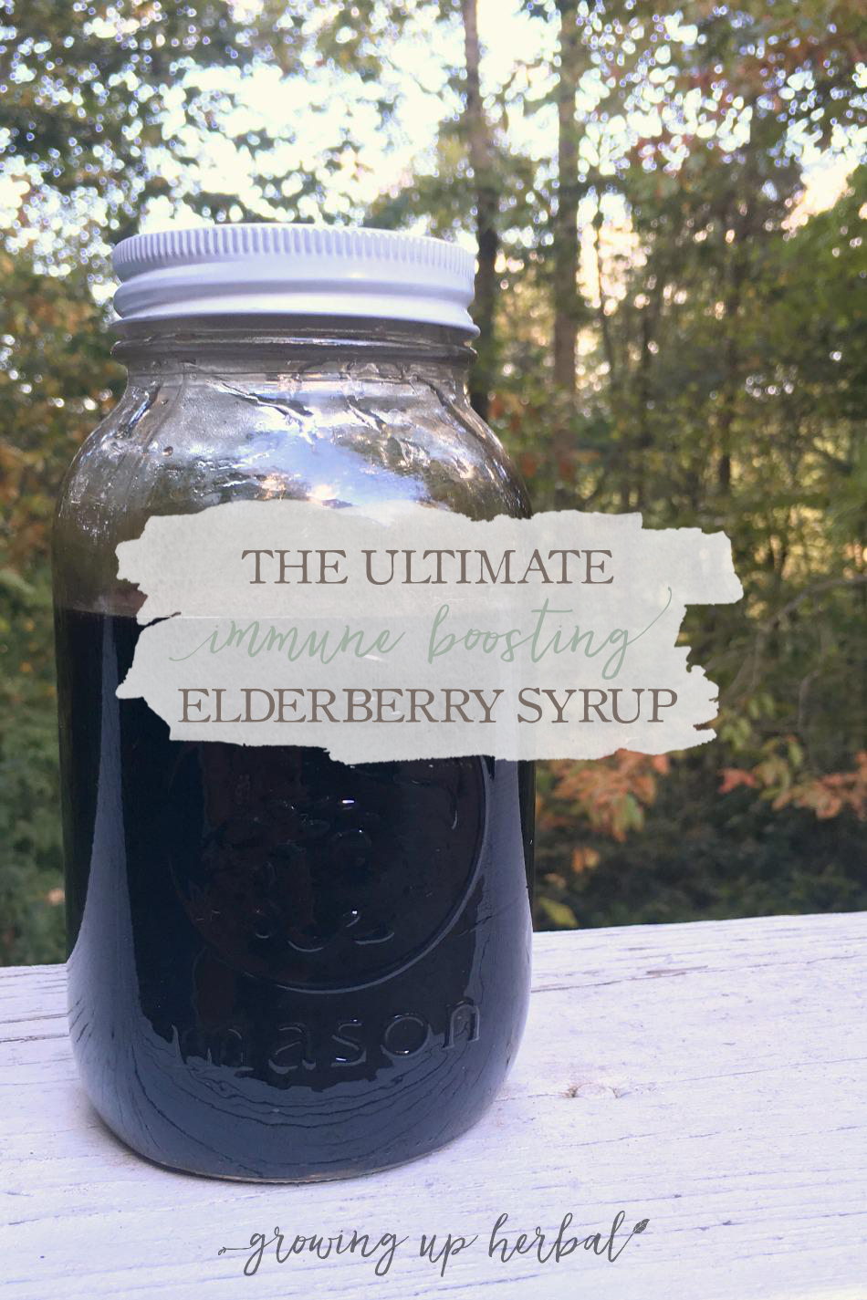 The Ultimate Immune Boosting Elderberry Syrup Growing Up