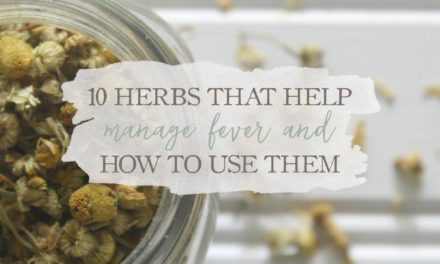 10 Herbs That Help Manage Fever & How To Use Them