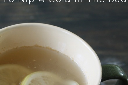 How To Use Lemon Ginger Tea To Nip A Cold In The Bud | GrowingUpHerbal.com | Drink stimulating lemon ginger tea at the first sign of a cold to nip it in the bud!