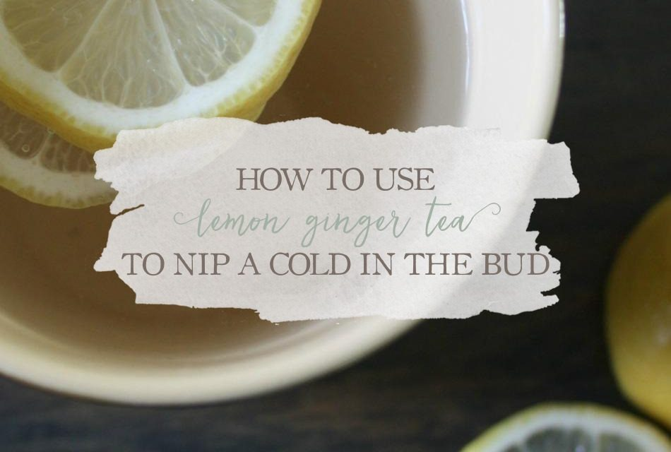 How To Use Lemon Ginger Tea To Nip A Cold In The Bud