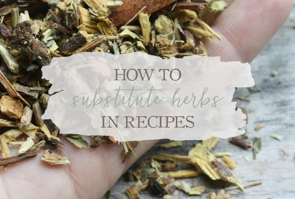 How To Substitute Herbs In Recipes