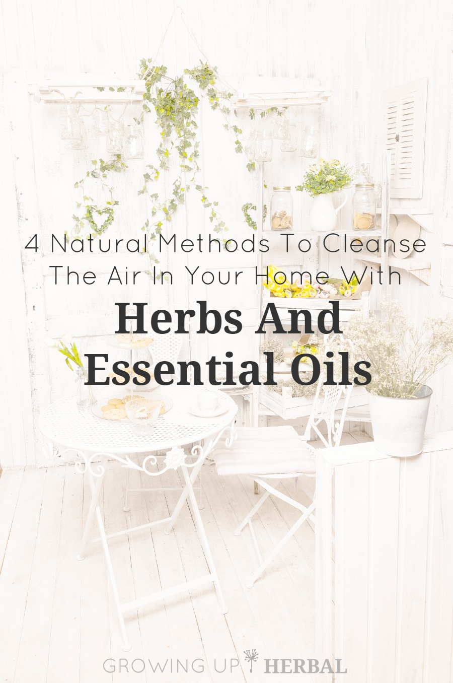 4 Natural Methods To Cleanse The Air In Your Home With