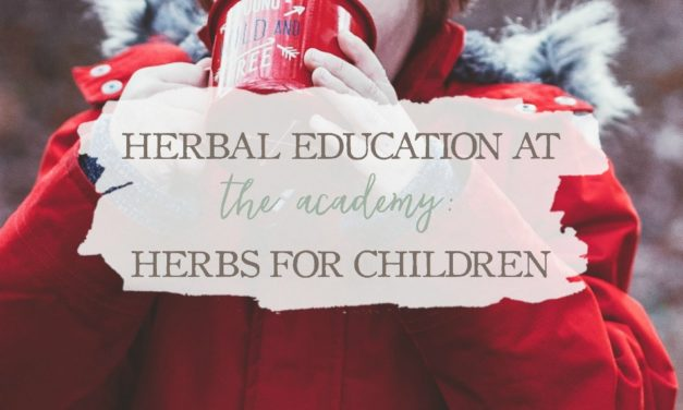 Herbal Education At The Academy: Herbs For Children