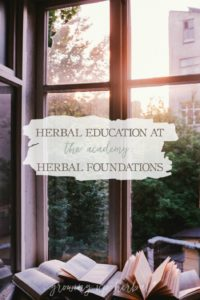 Herbal Education At The Academy: Herbal Foundations | Growing Up Herbal | Interested in going to herbal school? Here's a sneak peek at the Herbal Academy's Intermediate herbal course!