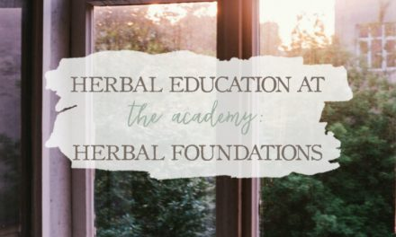 Herbal Education At The Academy: Herbal Foundations