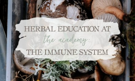 Herbal Education At The Academy: The Immune System