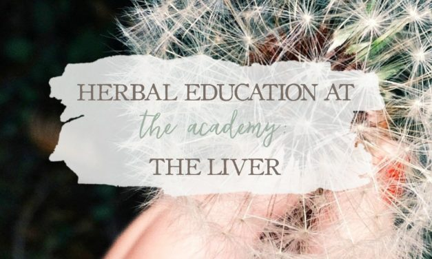 Herbal Education At The Academy: The Liver