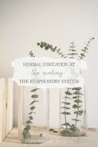 Herbal Education At The Academy: The Respiratory System   Growing Up Herbal   Interested in going to herbal school? Here's a sneak peek at the Herbal Academy's Intermediate herbal course!