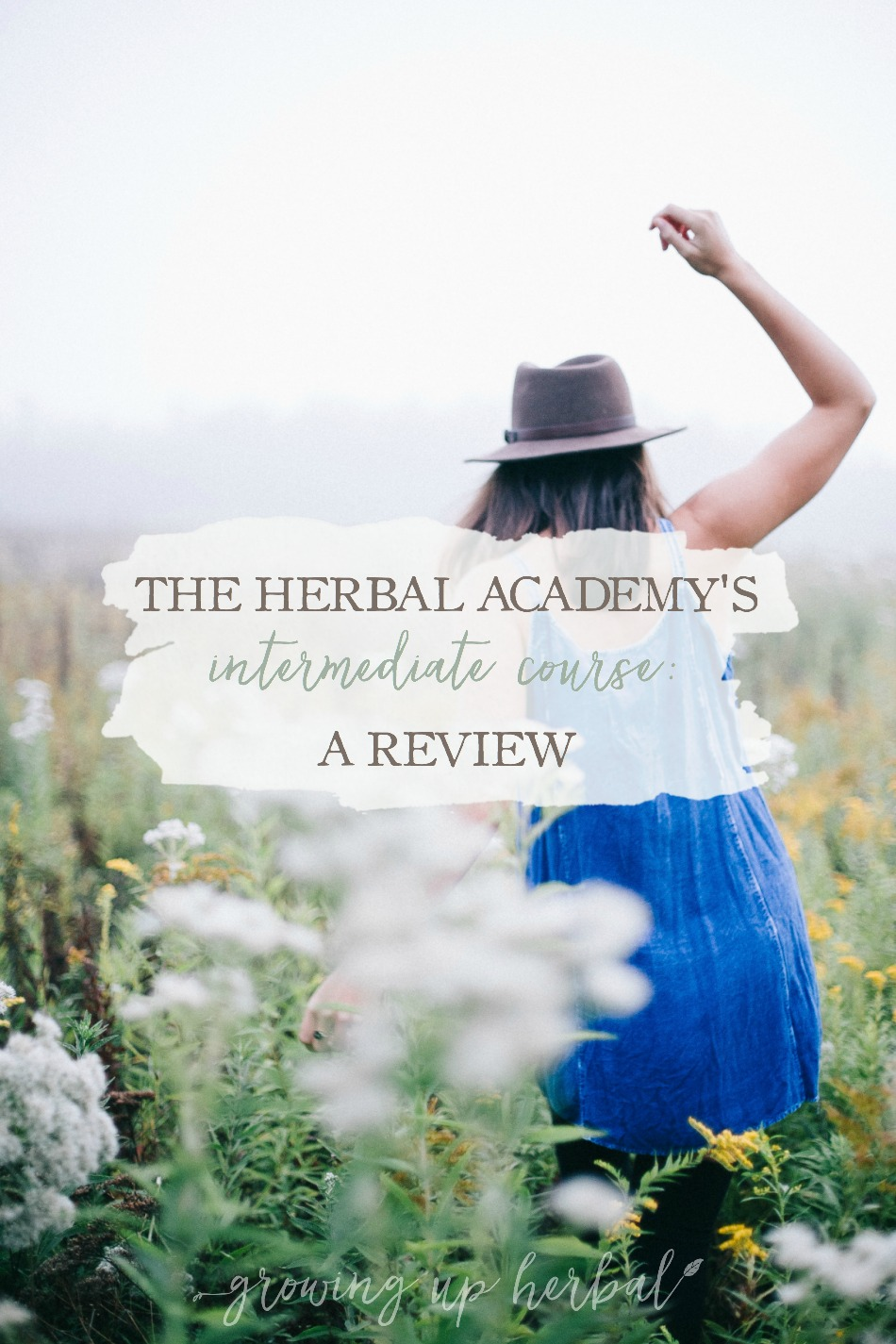 The Herbal Academy's Intermediate Herbal Course: A Review | Growing Up Herbal | Ever thought about going to herbal school at the Herbal Academy? If you're curious and you'd like an inside look, check out my review of their Intermediate Herbal Course right here!