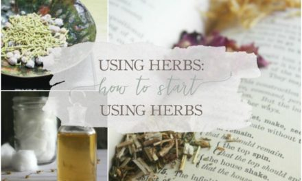 How To Start Using Herbs – A New Blog Series