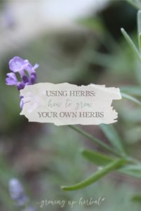 How To Grow Your Own Herbs | Growing Up Herbal | Learn to grow herbs in your own herb garden!