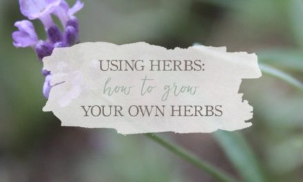 Using Herbs: How To Grow Your Own Herbs