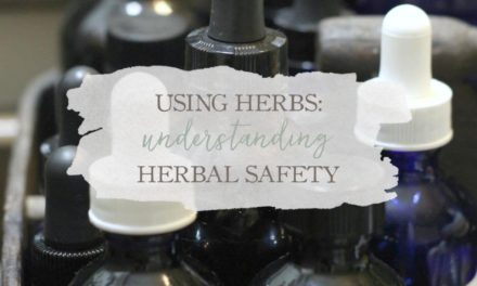 Using Herbs: Understanding Herbal Safety