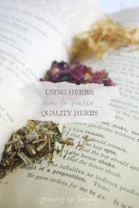 How To Source Quality Herbs | GrowingUpHerbal.com |Learn how to chose the best herbs for what you need.