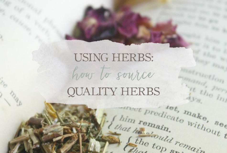 Using Herbs: How To Source Quality Herbs
