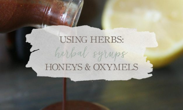 Using Herbs: Herbal Syrups, Honeys, And Oxymels